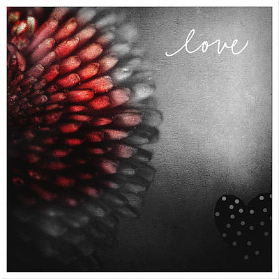 Photograph - Love by Bonnie Bruno