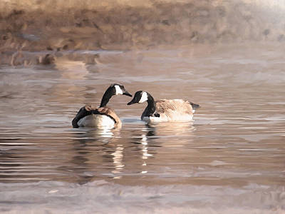Canadian Geese Mixed Media - Love by Dennis Buckman