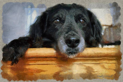 Love In A Puppy's Eyes Art Print by Paulette B Wright
