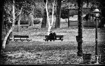 Photograph - Love In The Park by John Rizzuto