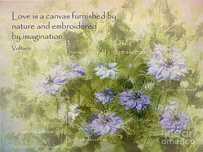 Photograph - Love Is A Canvas by Julia Springer