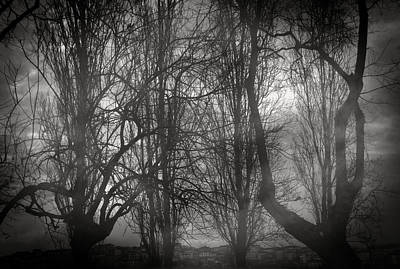 Clouds Photograph - Love Is Odd by Taylan Apukovska