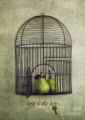 Surrealism Royalty-Free and Rights-Managed Images - Love is the key with typo by Priska Wettstein