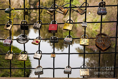Uc Davis Photograph - Love Locks by Juan Romagosa