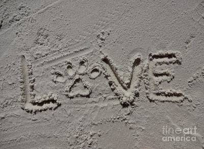 Florida Photograph - Love by Megan Cohen