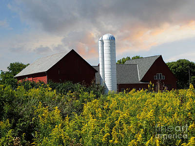 Photograph - Love Of Farms Three by Scott B Bennett