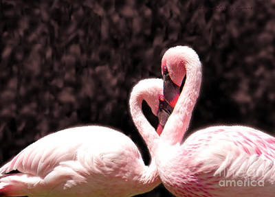 Love Of The Flamingos Art Print