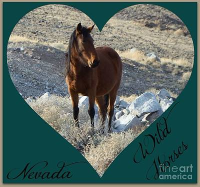 Photograph - Love Of Wild Horses by Bobbee Rickard