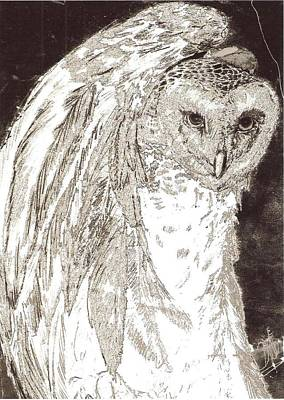 Drawing - Love Owl by George Harrison