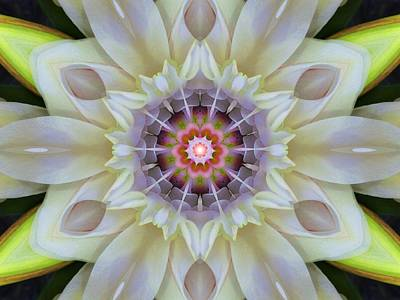 Digital Art - Love Star Flower Mandala by Diane Lynn Hix