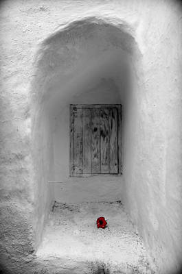 Remembering The Tragedy Of Romeo And Juliet This Closed Windows Receives A  Flower As Love Gift Art Print by Pedro Cardona