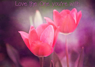 Photograph - Love The One You're With by Trina  Ansel