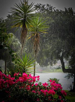 Photograph - Love The Rain  by Christy Usilton