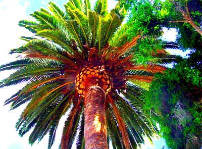 Love Under The Palm In San Diego Original