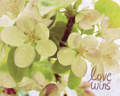 Cherry Blossoms Photograph - Love Wins by Lisa Barbero