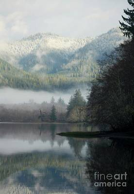 Photograph - Lovely Lake Quinault by Deena Otterstetter