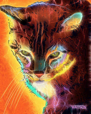 Digital Art - Lovely Lulu The Cat by Marlene Watson