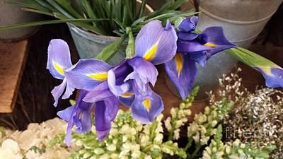 Lovely Purple Irises Art Print