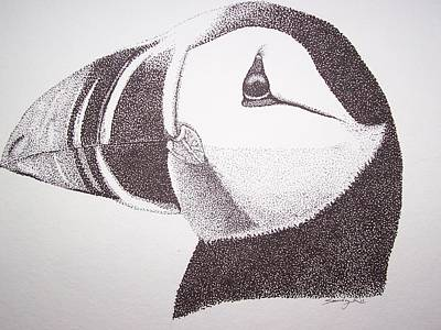Puffin Drawing - Lovely by Saundra Smoker
