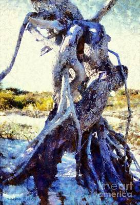 Lovers Entwined Beach Driftwood Print by Janine Riley