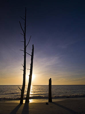 Photograph - Lovers Key Sunset by Bradley R Youngberg