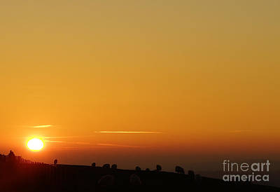 Lovers N Sunsets Art Print by Andrew Middleton