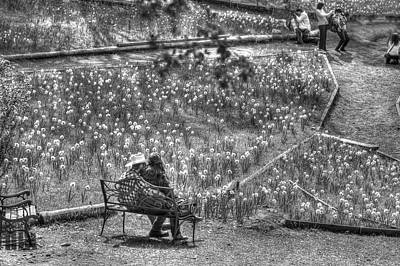 Photograph - Lovers On Daffodil Hill by SC Heffner