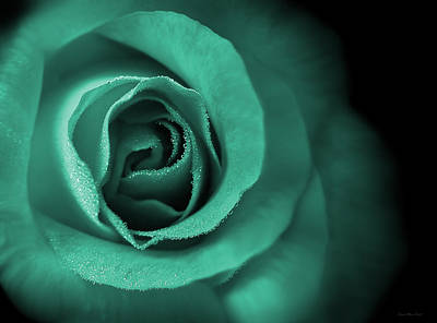 Photograph - Love's Eternal Teal Green Rose by Jennie Marie Schell