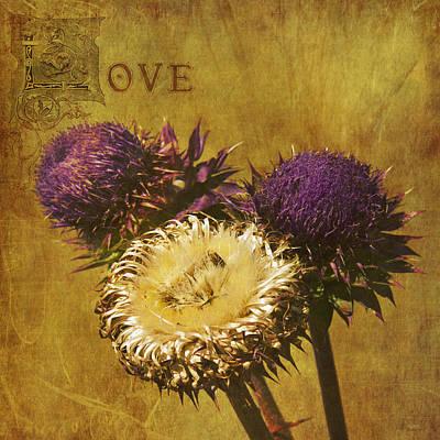 Loving Thistles II Art Print by AGeekonaBike Photography