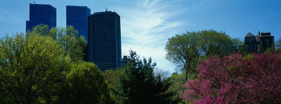 Local Views Photograph - Low Angle View Of Skyscrapers Viewed by Panoramic Images