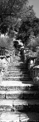 Low Angle View Of Steps In A Garden Art Print by Panoramic Images