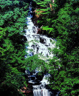 Wolf Creek Photograph - Low Angle View Of The Wolf Creek Falls by Panoramic Images