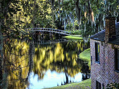Print featuring the photograph Low Country Impressions by Jim Hill