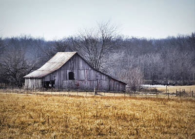 Barn Lots Photograph - Low Crossings Barn by Cricket Hackmann