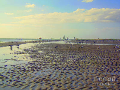Photograph - Low Tide At Siesta Beach by Lou Ann Bagnall