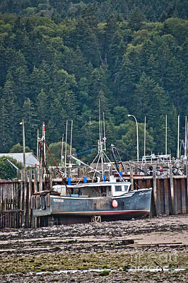 Photograph - Low Tide Fishing Boat by Cheryl Baxter