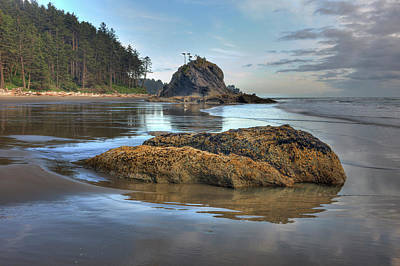 Olympic National Park Photograph - Low Tide Olympic National Park by Tom Norring