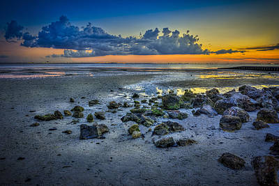 Low Tide On The Bay Art Print