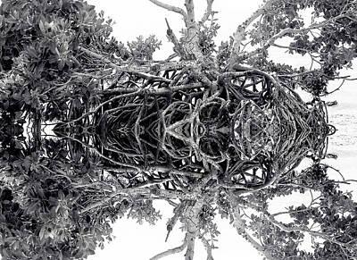 Low Tide Reflects Art Print