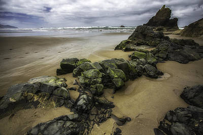 Photograph - Low Tide by Sara Hudock