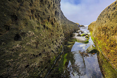 Photograph - Low Tide Trough 1 by Scott Campbell