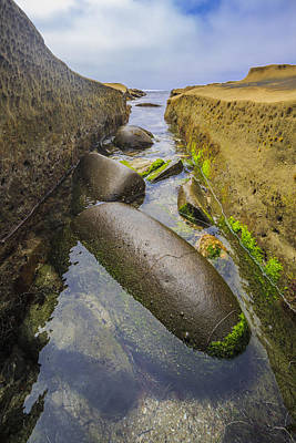 Photograph - Low Tide Trough 2 by Scott Campbell