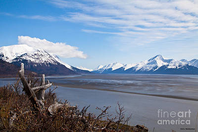 Photograph - Low Tide Turnagain Arm by Chris Heitstuman