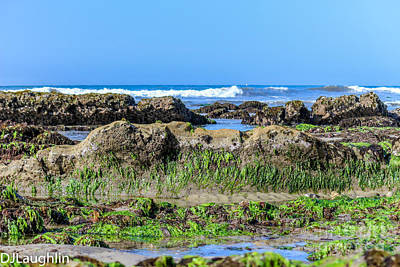 Photograph - Low Tide Wonders by DJ Laughlin