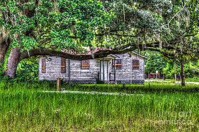 Photograph - Lowcountry Heritage by Dale Powell