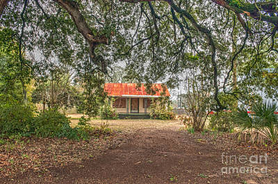 Photograph - Lowcountry Homestead by Dale Powell
