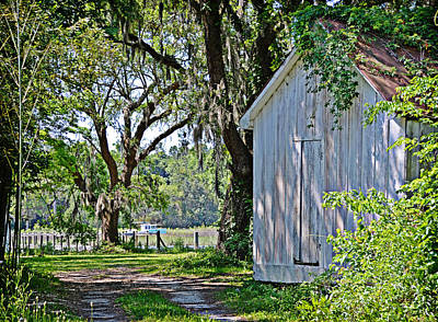 Photograph - Lowcountry Morning by Linda Brown