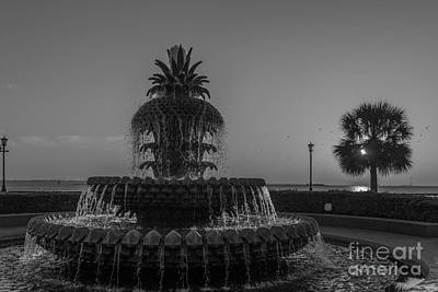 Photograph - Lowcountry Pineapple by Dale Powell