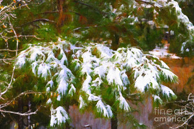 Photograph - Lowcountry Snow by Dale Powell