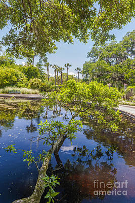 Photograph - Lowcountry Water View by Dale Powell